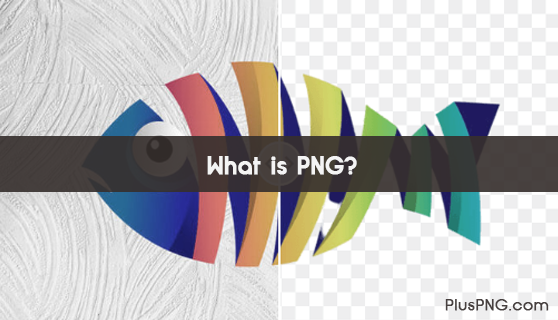 What is PNG?