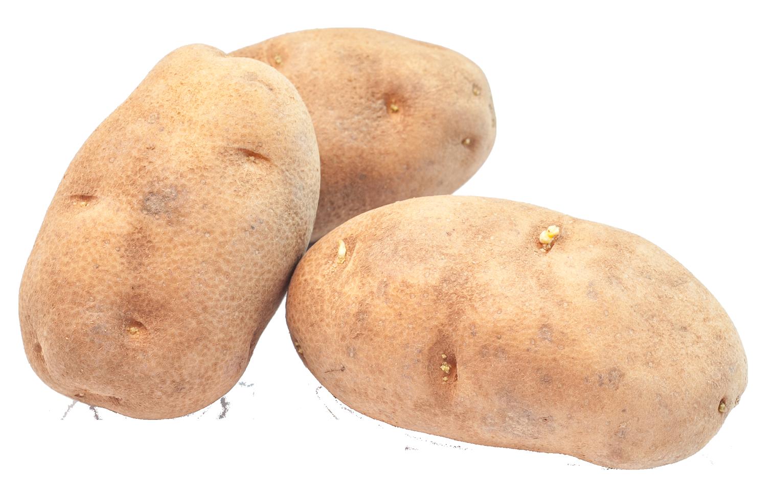 Potato PNG - 7085
