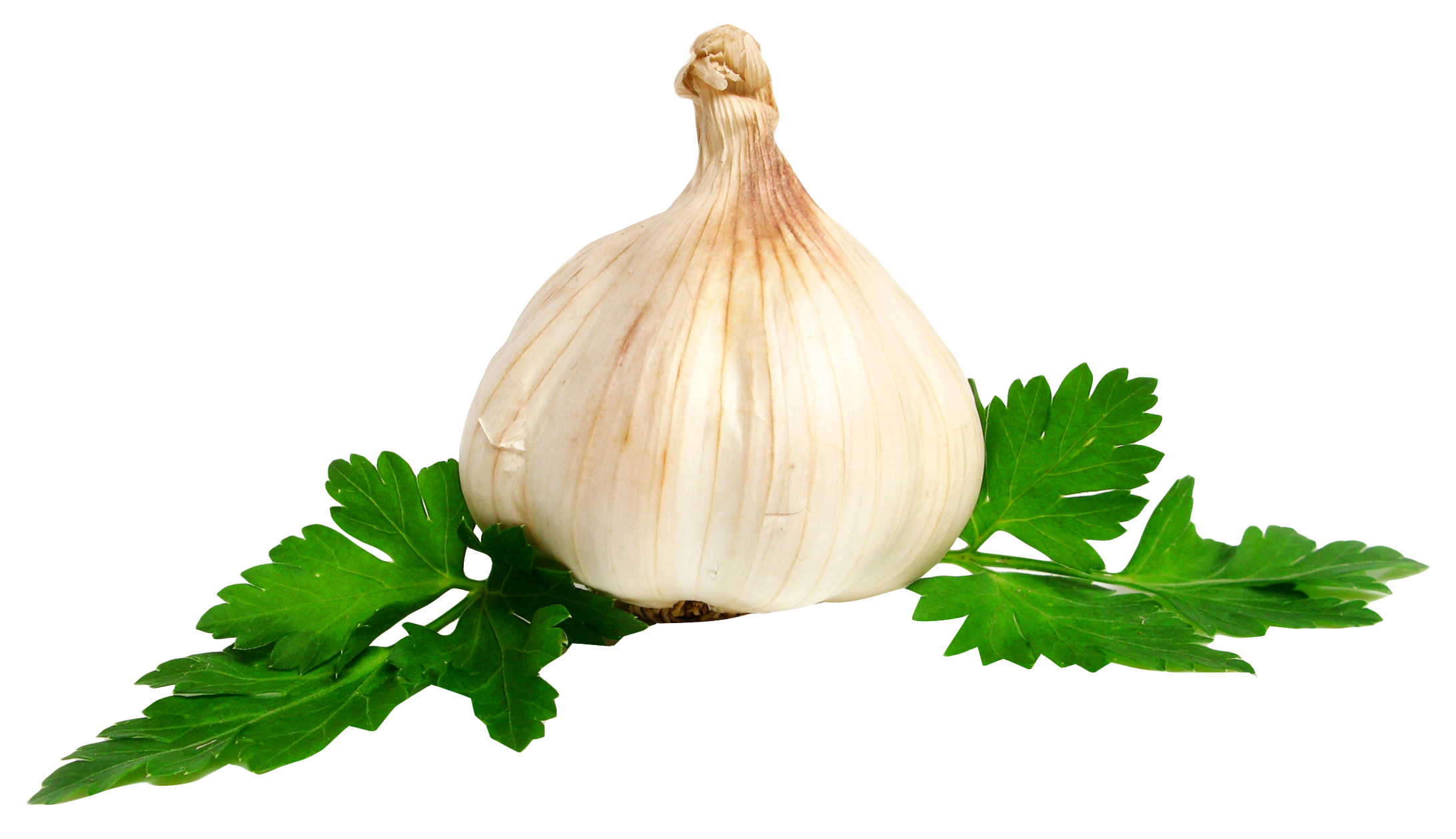 PlusPNG - Garlic PNG