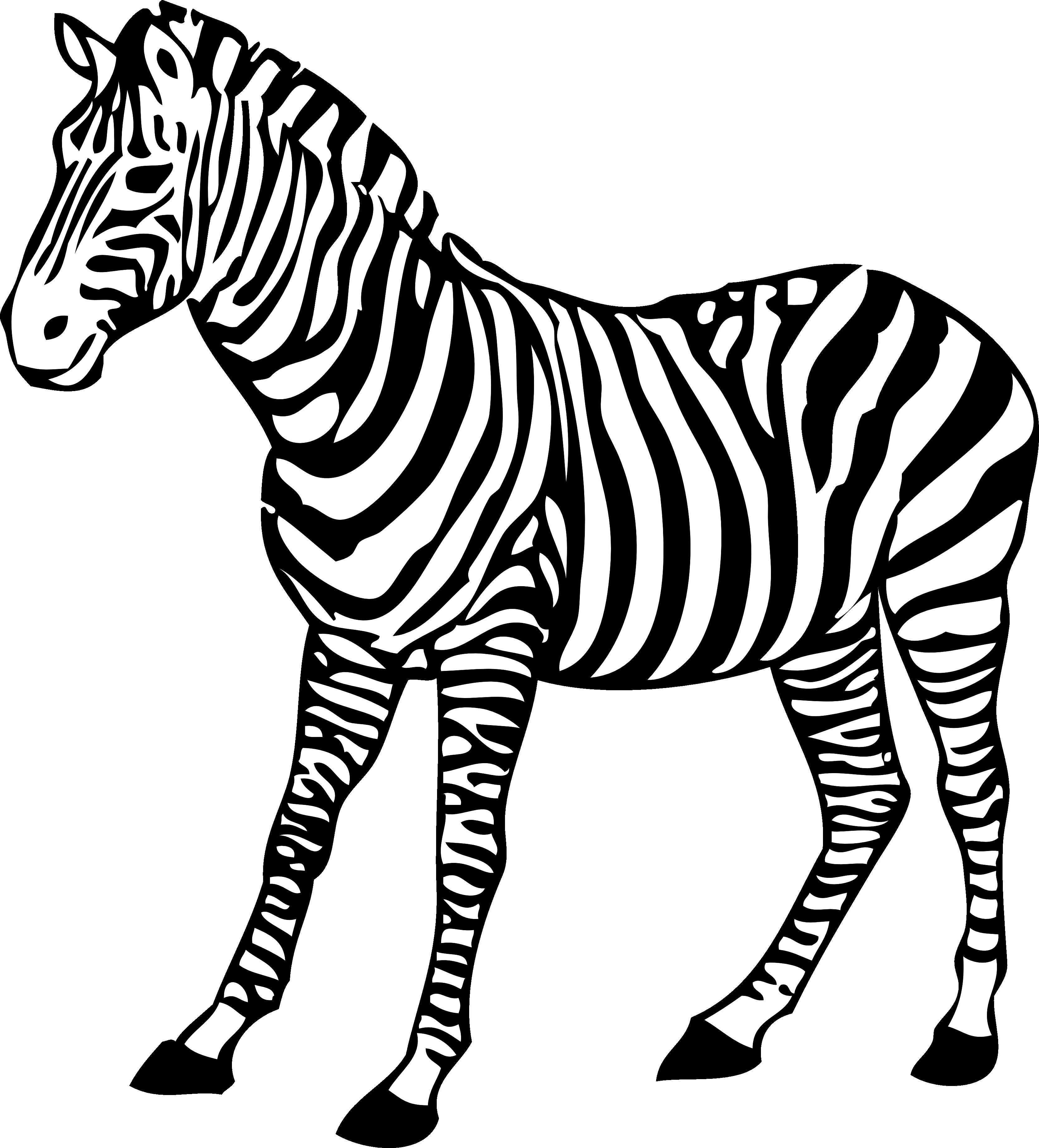 PlusPNG - Zebra PNG