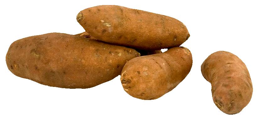 Potato PNG - 7092