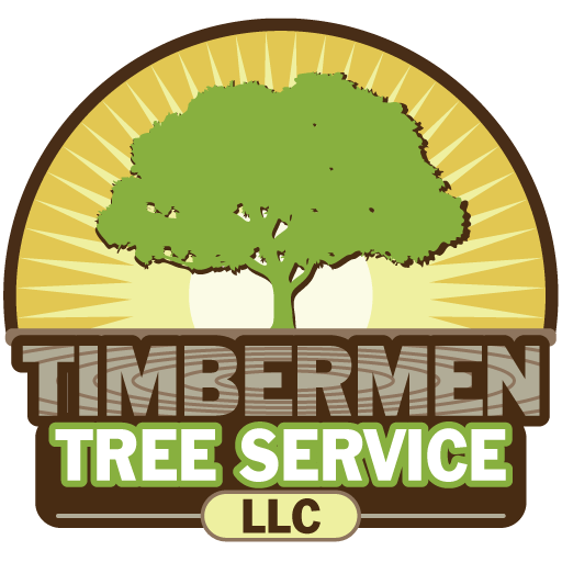 A 1 Tree Services PNG-PlusPNG.com-512 - A 1 Tree Services PNG