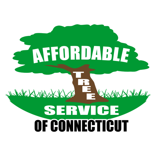 Affordable Tree Service of CT - A 1 Tree Services PNG