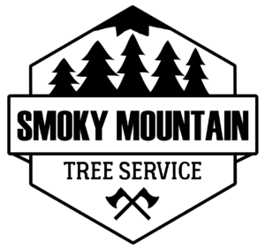 VOTED BEST Tree Service in Knoxville, TN | Smoky Mountain Tree Service |  Knoxville Tree - A 1 Tree Services PNG