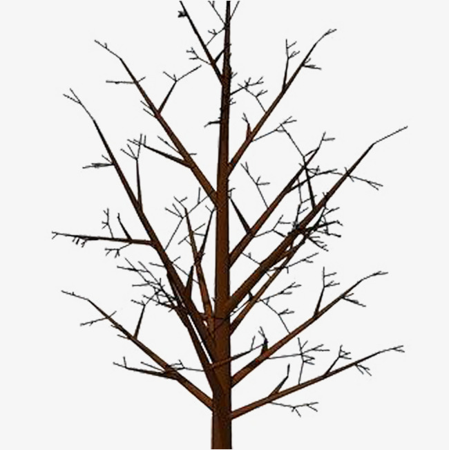 Bare branches, Plant, Dying, Dim PNG Image and Clipart - A Dying Tree PNG