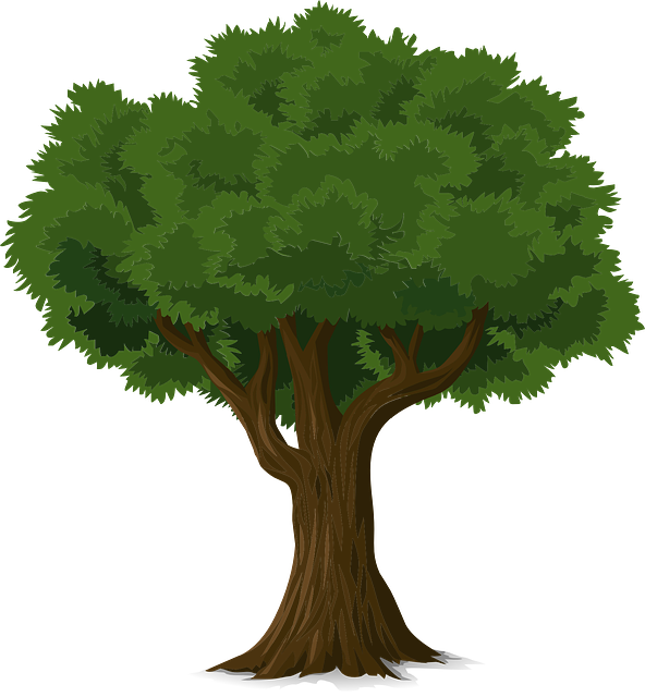 Tree - A Dying Tree PNG