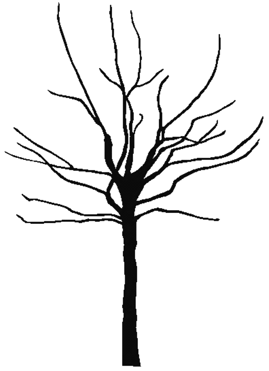 . PlusPng.com tree black 300DPI COPY PlusPng.com  - A Dying Tree PNG