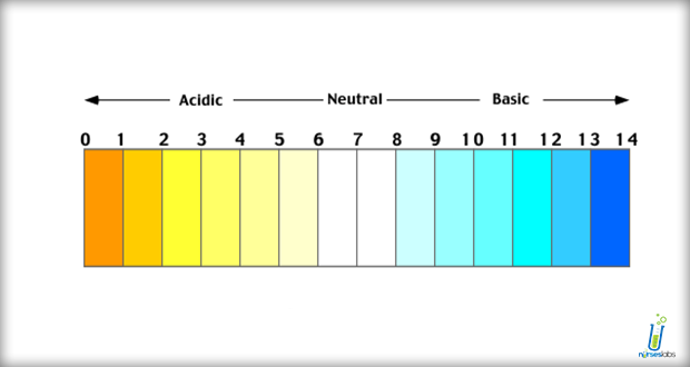 Acidu2013base imbalance is an abnormality of the human bodyu0027s normal balance of  acids and - Acid And Base PNG