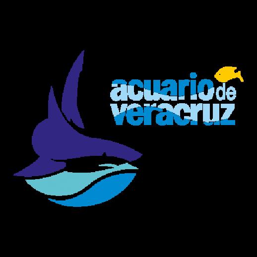 Acuario De Veracruz PNG-PlusPNG.com-518 - Acuario De Veracruz PNG