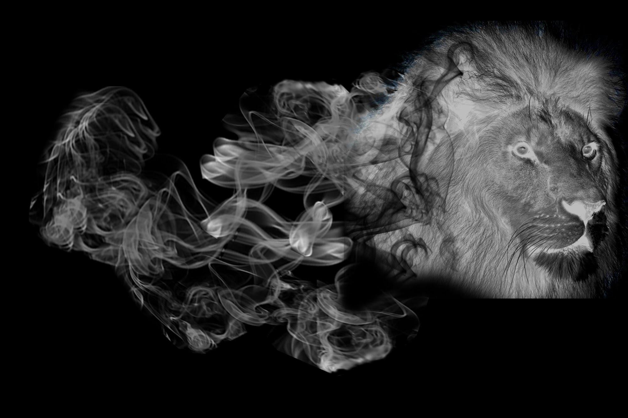 Adobe Photoshop How To Make A Smoke Effect - Smoke Effect PNG