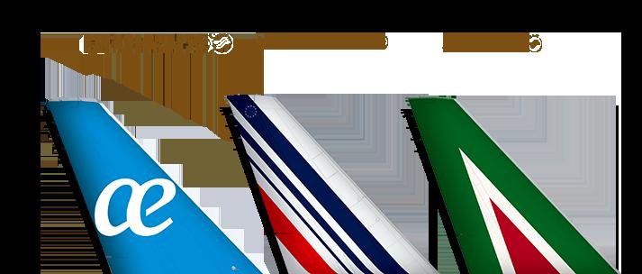 skyteam brands - Aeromexico Skyteam PNG