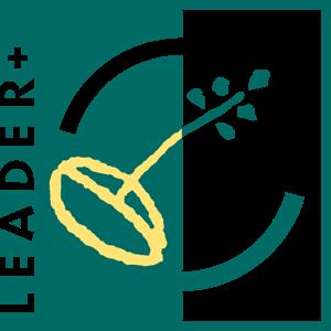 Leader Plus Logo - Afkarcity Vector PNG