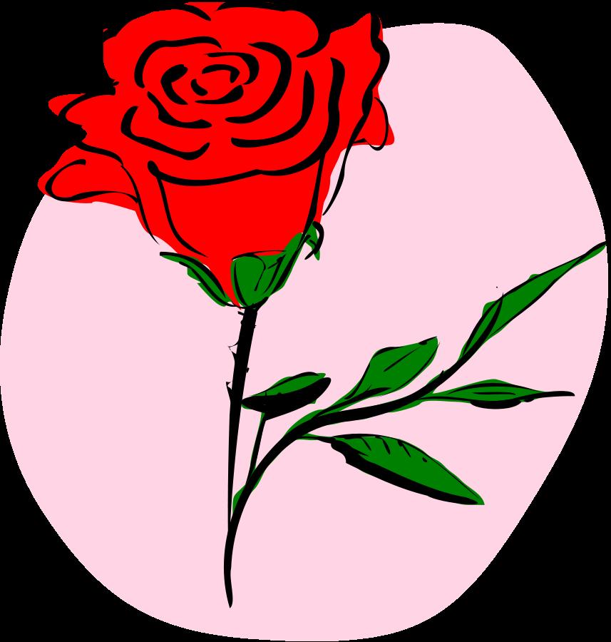 Coloured Rose medium 600pixel clipart, vector clip art - Air Rose Vector PNG
