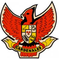 Almacenes Exito; Logo of Cardenales del Éxito - Almacenes Exito Logo Vector PNG