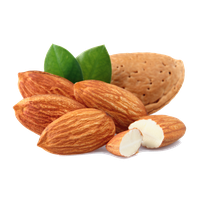 Almond Free Download Png PNG Image - Almond PNG