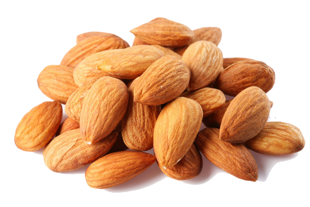 Almond PNG - 13129