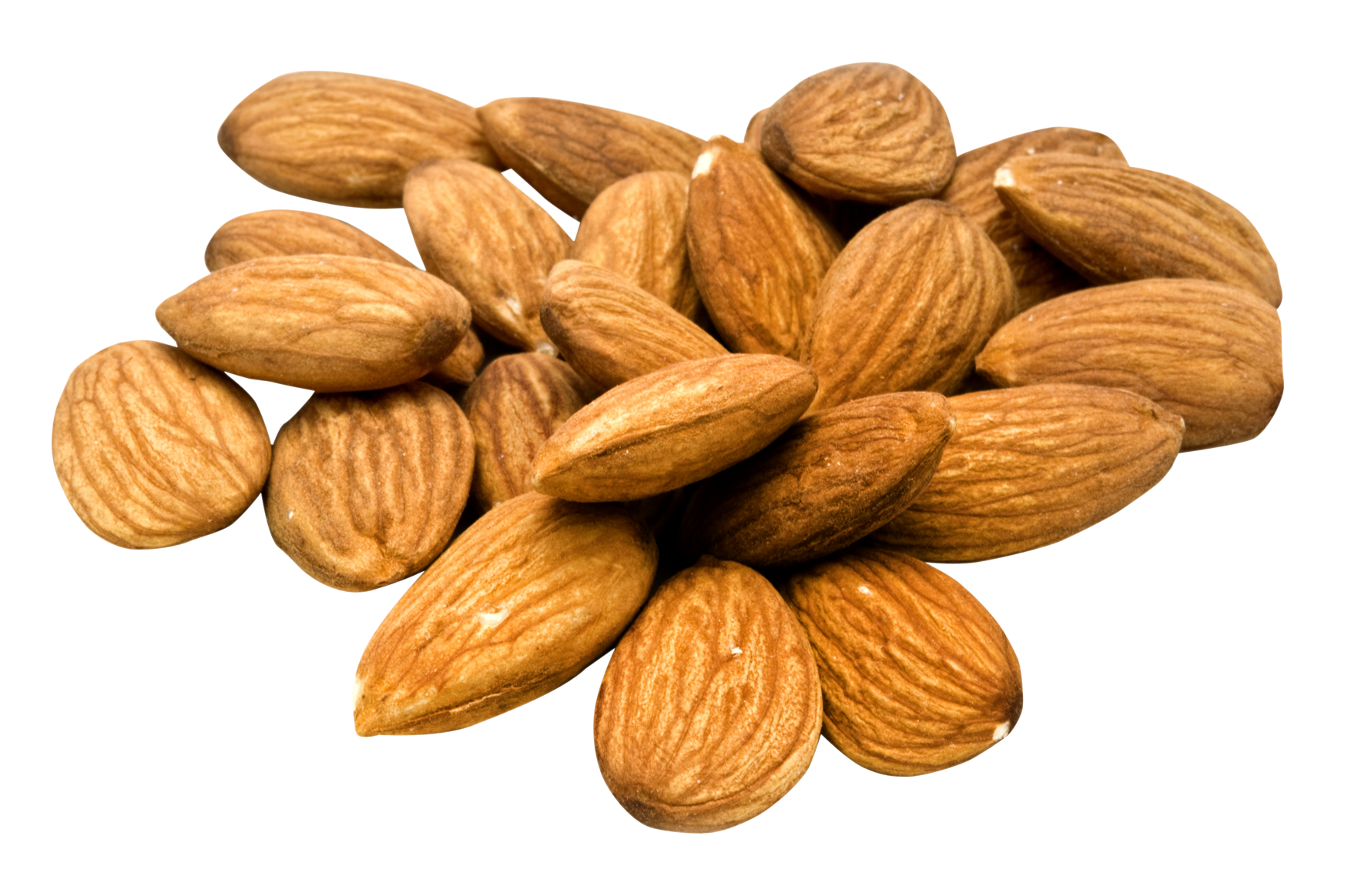 Almond PNG - 13118
