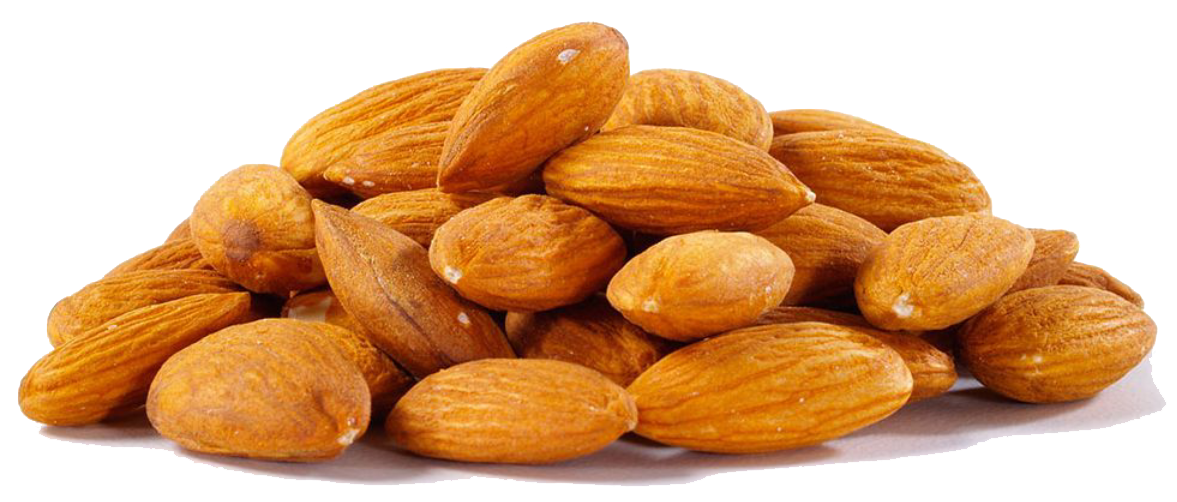 Almond PNG - 13131
