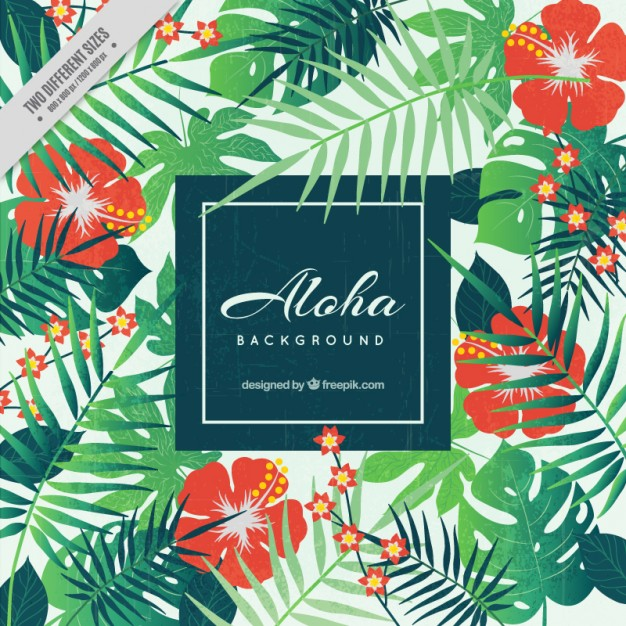 Aloha background, floral style - Aloha Style PNG