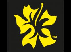 Aloha Style Logo Photo - 1 - Aloha Style PNG