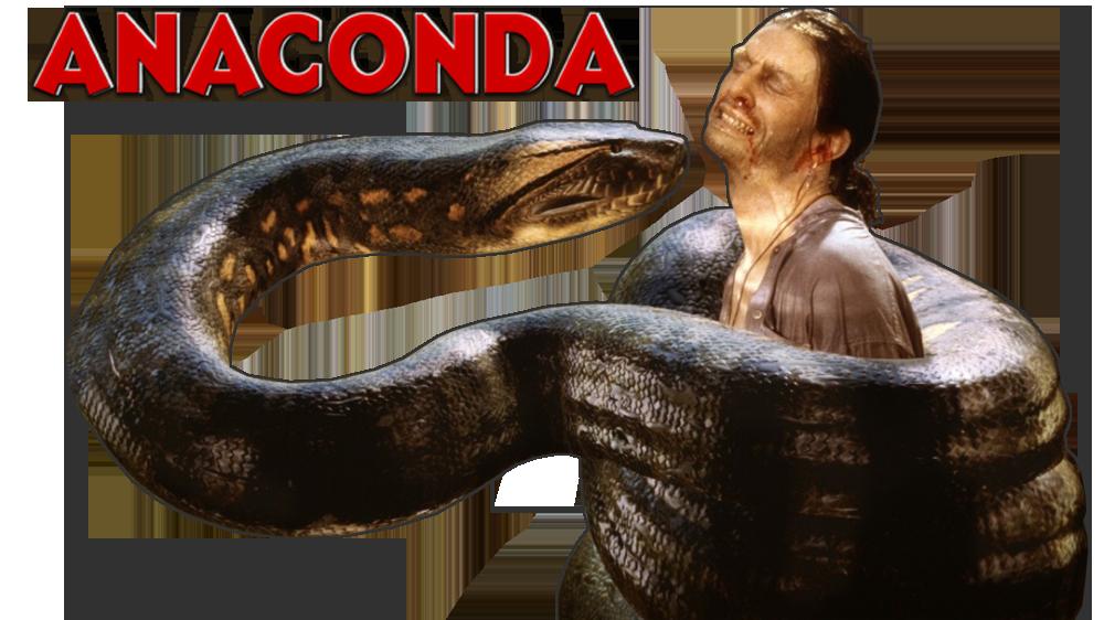 Anaconda PNG - 10955