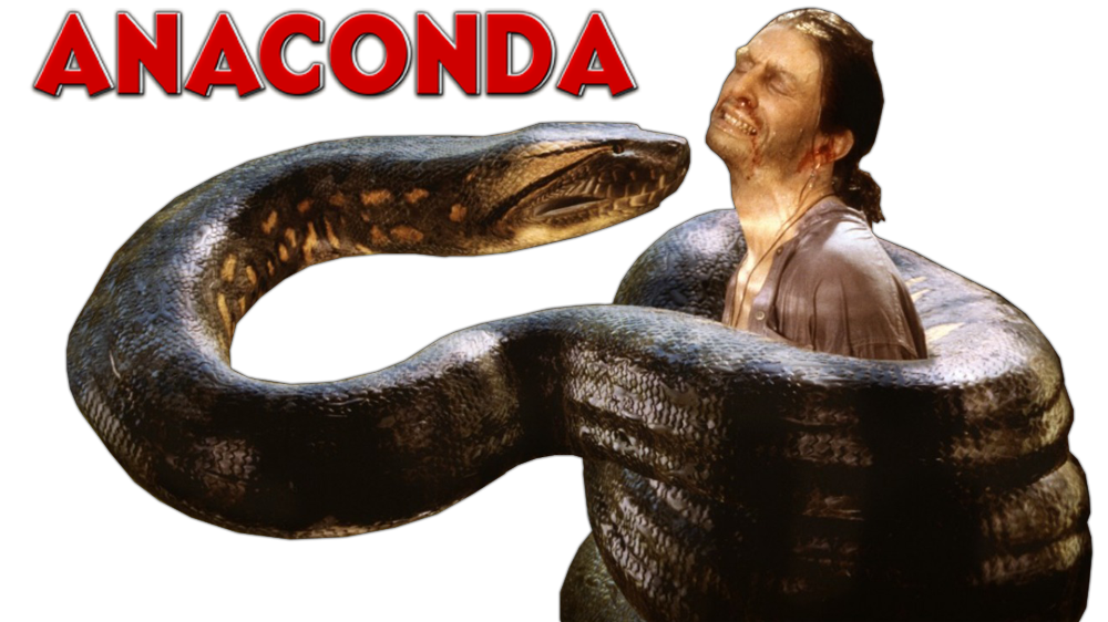 Filename: anaconda-50966f585ef05.png - Anaconda PNG