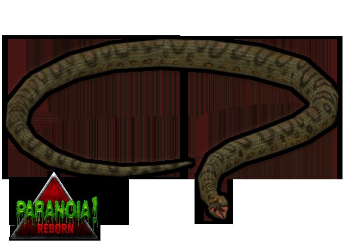 Anaconda PNG - 10957