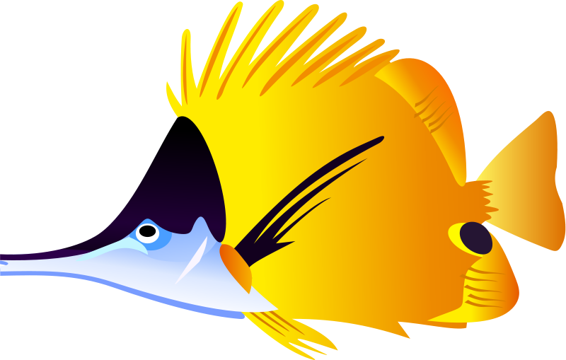 Angelfish Clipart Puffer Fish #1 - Angel Fish PNG HD