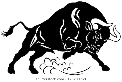 angry bull, attacking pose, black and white image - Angry Bull PNG