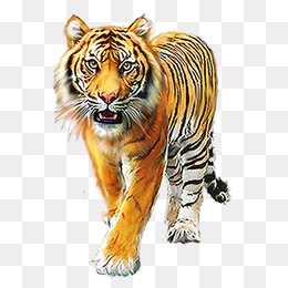 animal, Animal, Forest Animals, Animal Illustration PNG Image - Animal HD PNG