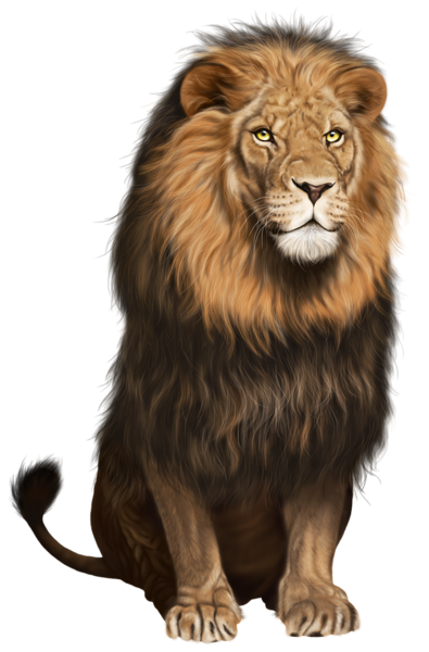 Lion PlusPng.com  - Animal HD PNG