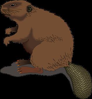 Beaver Wood Standing Tail Log Beaver Beave - Animal Tail PNG