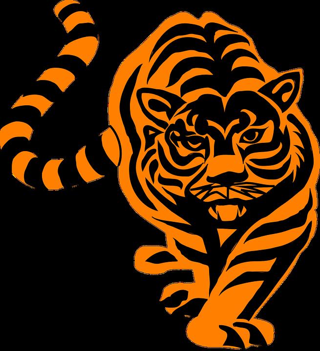 stripes tiger animal tail mammal hunting prowling - Animal Tail PNG