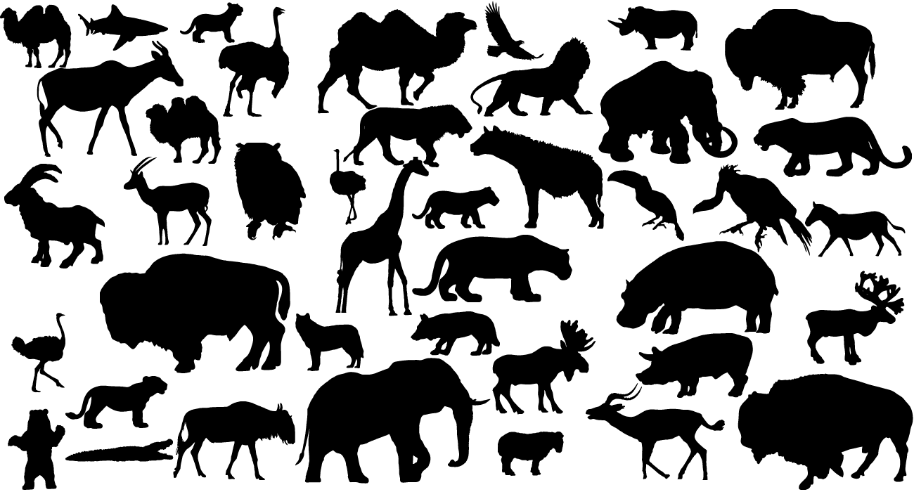 41 Animal Vector Silhouettes by Lukasiniho 41 Animal Vector Silhouettes by  Lukasiniho - Animal Vector PNG