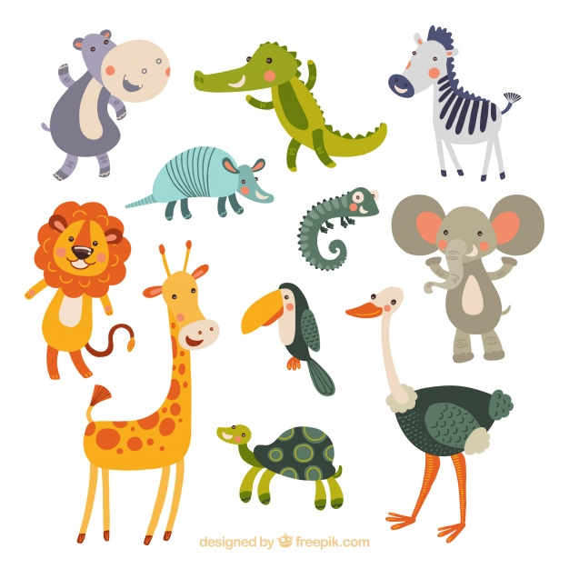 Funny collection of hand-drawn animals - Animal Vector PNG