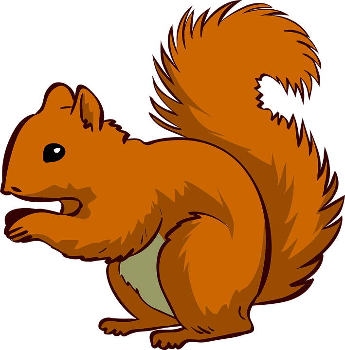 Animal Vector PNG - 114249