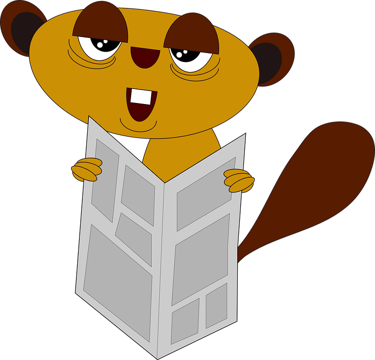 Animal, Cute, Funny, Newspaper, Reading - Animals Reading PNG HD