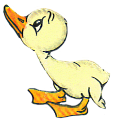Stupid pig cartoon drawing · Cute duckling PlusPng.com  - Animals Reading PNG HD