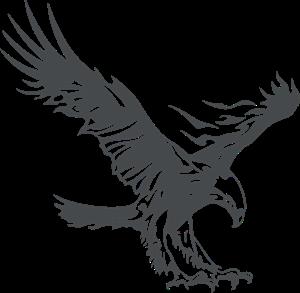 Eagle Logo Template - Apa Eagle Logo PNG