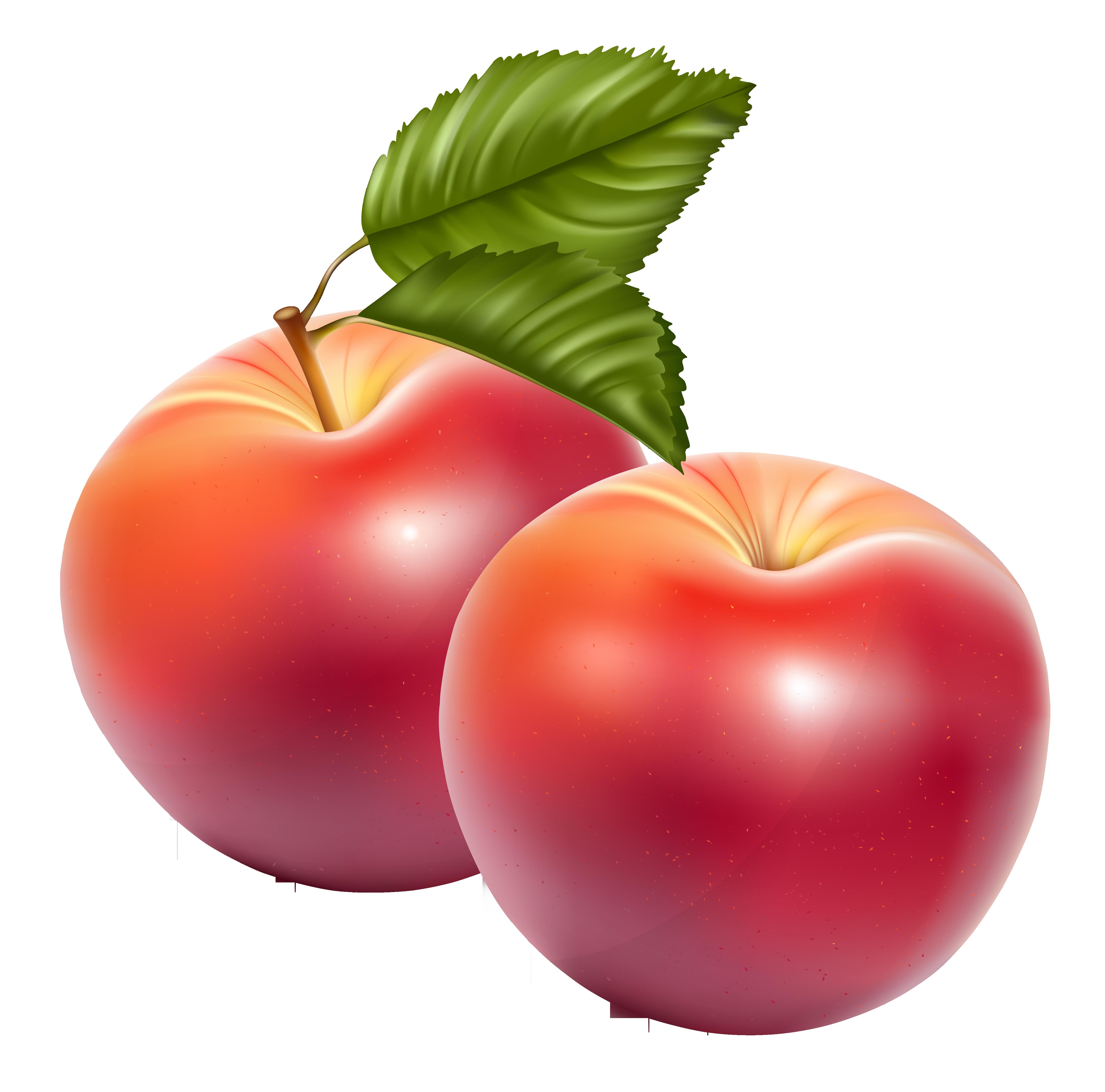 Apple - Apple Fruit PNG