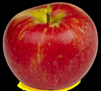 Apple Fruit PNG - 28151