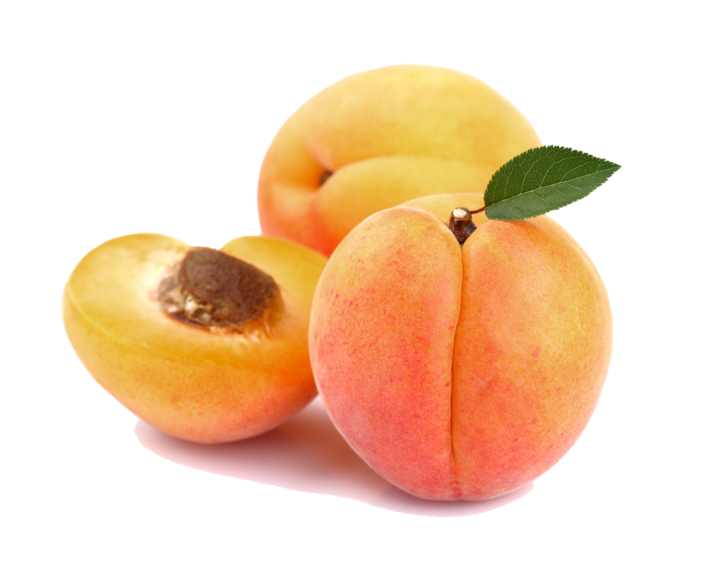 Apricot HD PNG - 92243