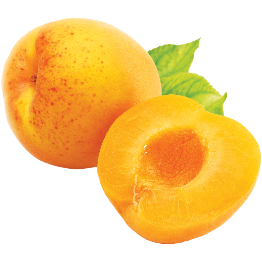 Apricot PNG - 17395