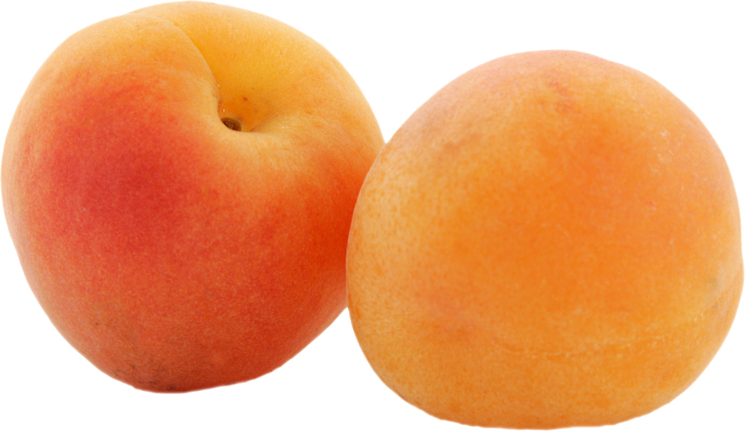 Apricot PNG - 17401