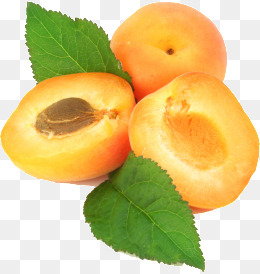 Apricot PNG - 22315