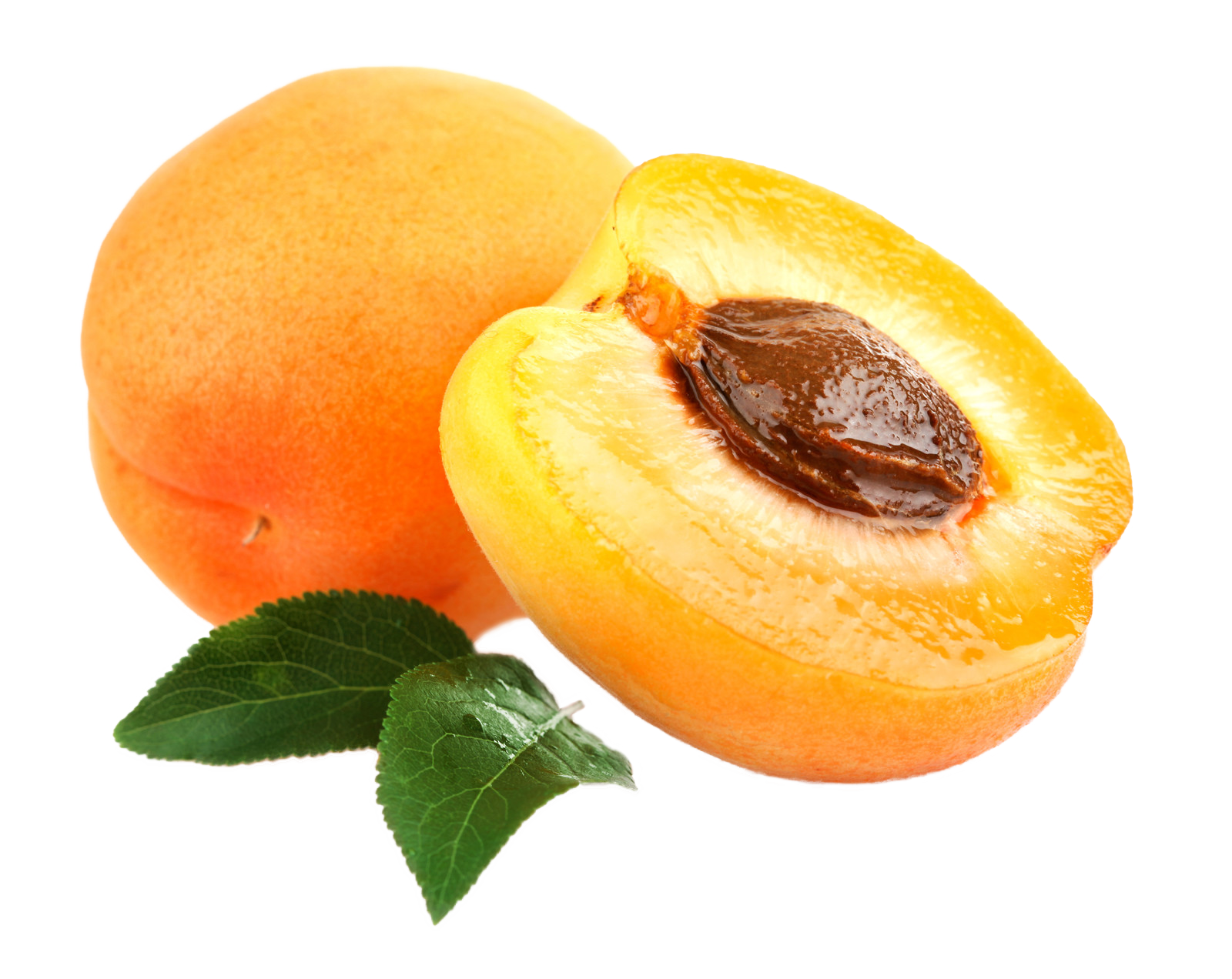 Apricot PNG - 22303