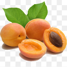 apricot · PNG - Apricot PNG