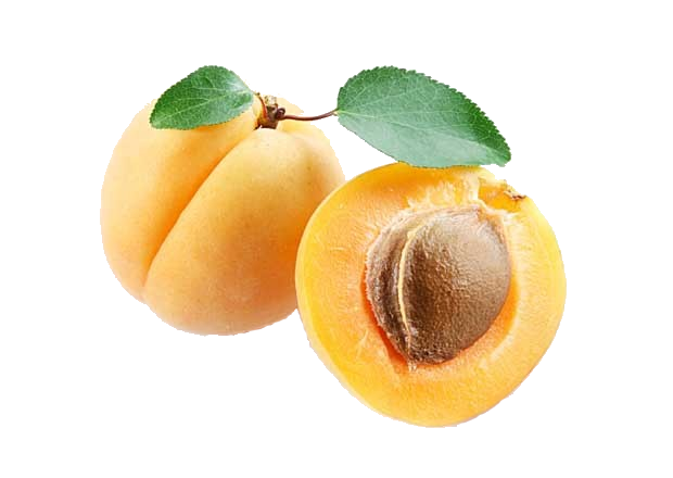 Apricots in Closeup PNG image