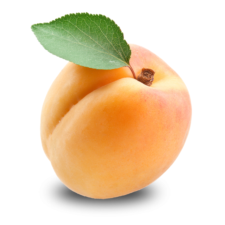 Apricot PNG - 22305