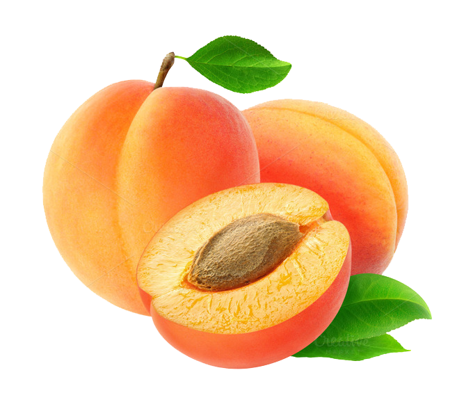 Apricot PNG - 22302